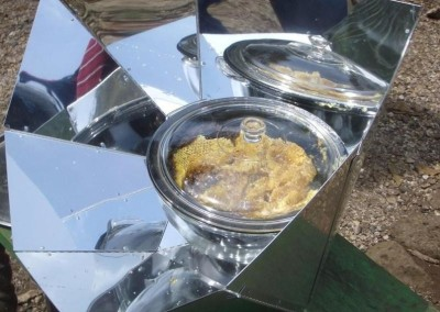 Solar Pot Honey_795